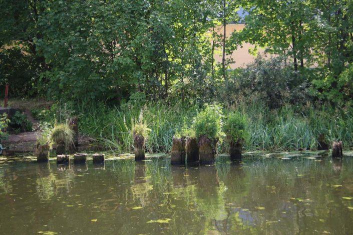 Plaukimas laivu Danės upėje